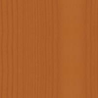 вишня рыжая.png